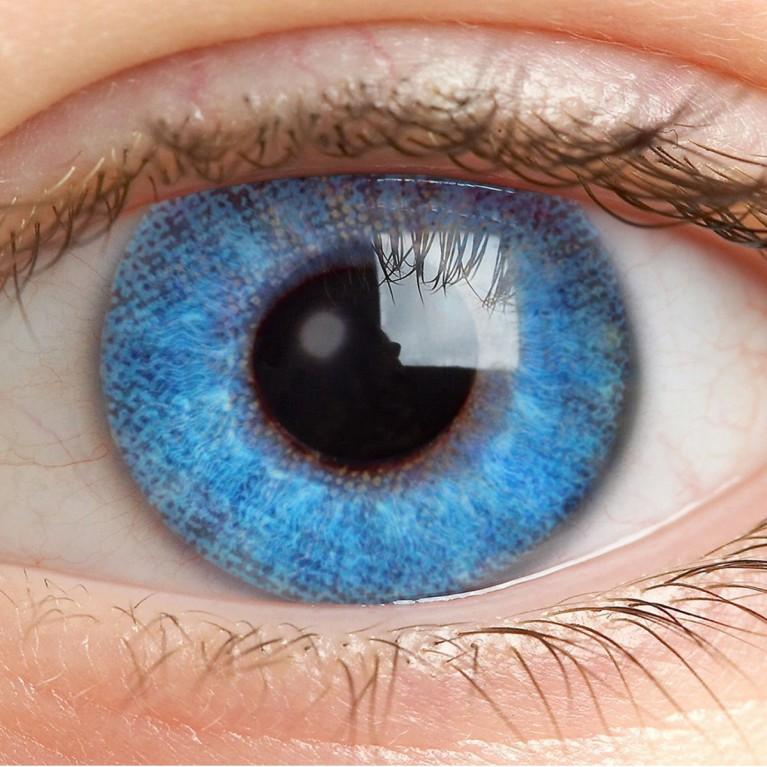 Farblinsen Blau Ohne Stärke - Sky Blue