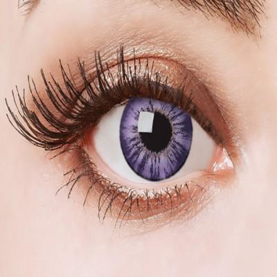 Aricona Big Eyes Dolly rose